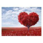 Carte Coeur rouge
