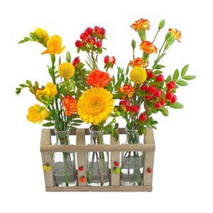 Mini vases coccinelle