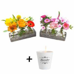 Duo senteur mini vases